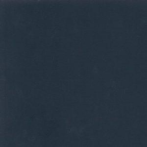 Aneurin - Dark Blue