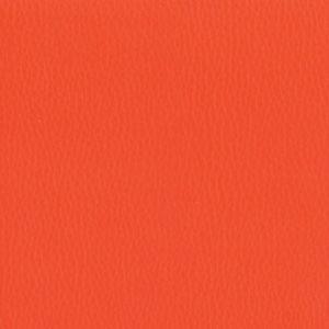 Dollaro-Orange