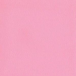 Dollaro-Pink