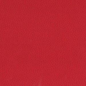 Dollaro-Red