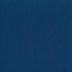 Dollaro-Royal-Blue