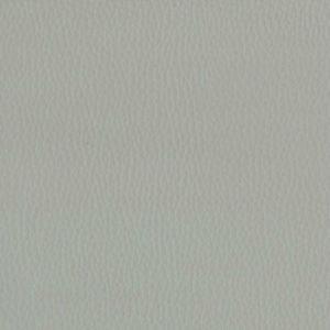 Dollaro-Seal-Grey