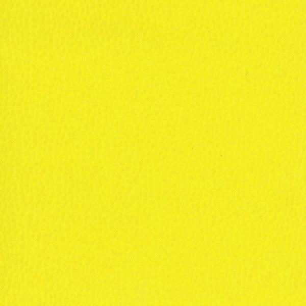 Dollaro-Yellow