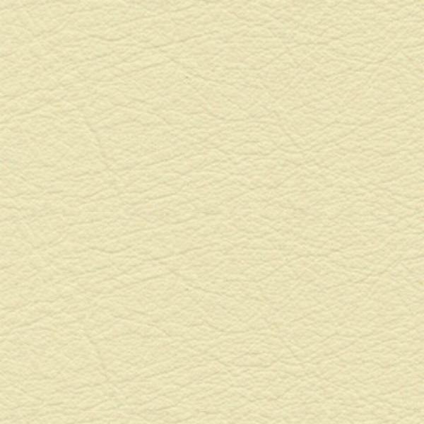kansas-ivory