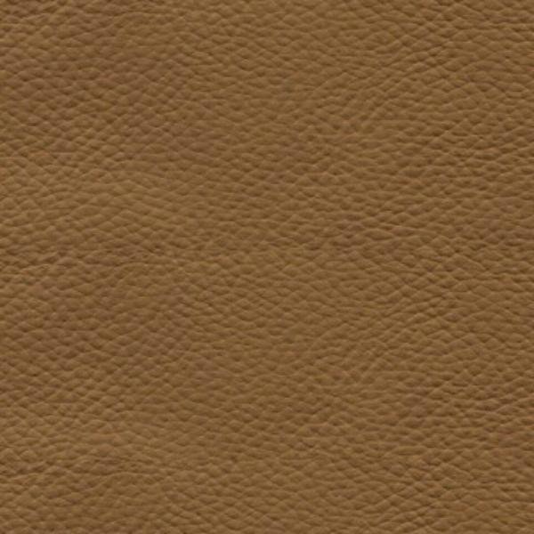 Kensington-Cinnamon