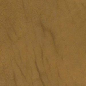 tribe-sequoia