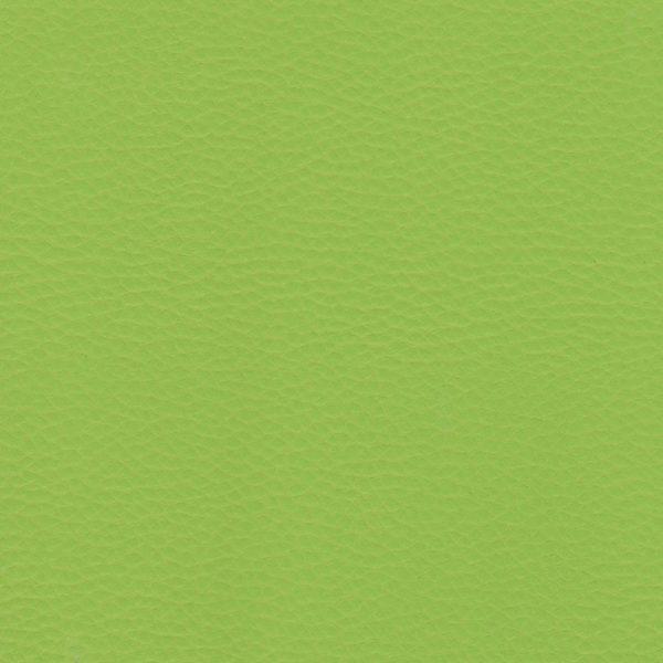YarwoodLeather_Dollaro_Apple Green-01