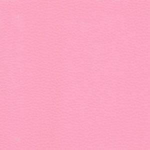 Yarwood Leather Dollaro Pink