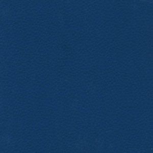 Yarwood Leather Dollaro Royal Blue